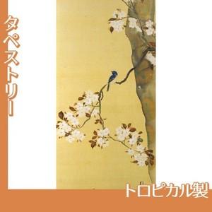 酒井抱一「桜に小禽図・柿に小禽図(右隻)」【タペストリー:トロピカル】
