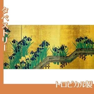 酒井抱一「八橋図屏風(右隻)」【タペストリー:トロピカル】
