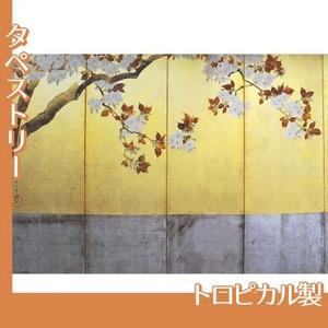 酒井抱一「桜図屏風(左隻)」【タペストリー:トロピカル】