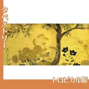 酒井抱一「槙に秋草図屏風(左隻)」【タペストリー:トロピカル】
