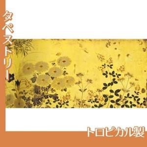 酒井抱一「槙に秋草図屏風(右隻)」【タペストリー:トロピカル】