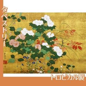 酒井抱一「秋草花卉図」【タペストリー:トロピカル】