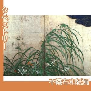 酒井抱一「夏秋草図屏風(右隻)」【タペストリー:不織布和紙風】