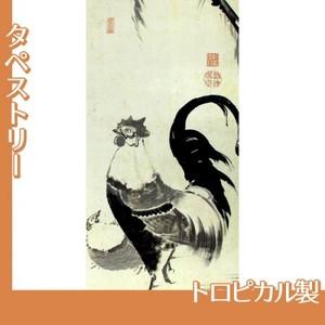 伊藤若冲「柳下双鶏図(双幅)」【タペストリー:トロピカル】