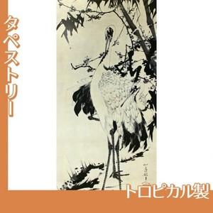 伊藤若冲「竹梅群鶴図1(双幅)」【タペストリー:トロピカル】