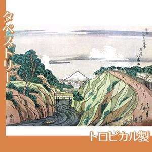 葛飾北斎「東都御茶之水風景」【タペストリー:トロピカル】