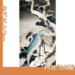 葛飾北斎「雪松に鶴」【タペストリー:トロピカル】