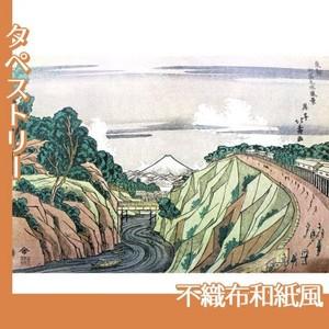 葛飾北斎「東都御茶之水風景」【タペストリー:不織布和紙風】