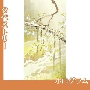 川合玉堂「暮春の雨1」【タペストリー:ホログラム】