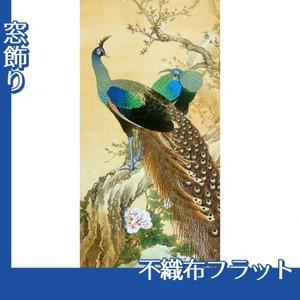 今尾景年「孔雀」【窓飾り:不織布フラット100g】