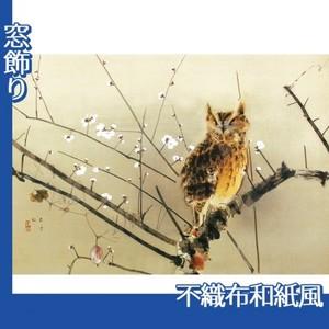 西村五雲「寒梅」【窓飾り:不織布和紙風】