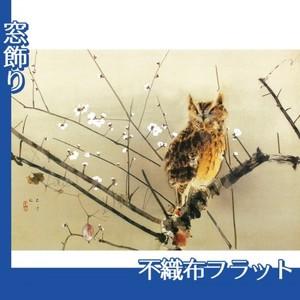 西村五雲「寒梅」【窓飾り:不織布フラット100g】