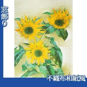 速水御舟「向日葵(本制作)」【窓飾り:不織布和紙風】