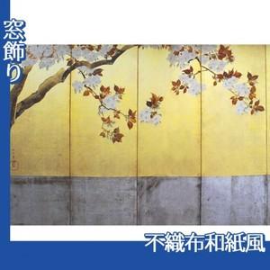 酒井抱一「桜図屏風(左隻)」【窓飾り:不織布和紙風】