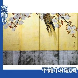 酒井抱一「桜図屏風(右隻)」【窓飾り:不織布和紙風】