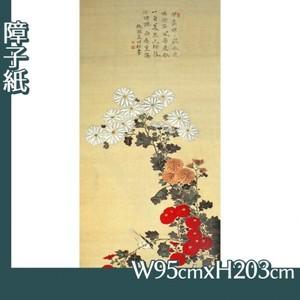 酒井抱一「菊に小禽図」【障子紙】