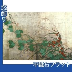 酒井抱一「夏秋草図屏風(左隻)」【窓飾り:不織布フラット100g】