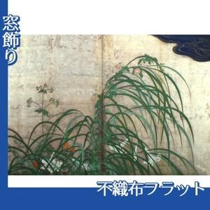 酒井抱一「夏秋草図屏風(右隻)」【窓飾り:不織布フラット100g】