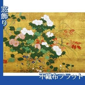 酒井抱一「秋草花卉図」【窓飾り:不織布フラット100g】