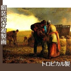 ミレー「馬鈴薯の収穫」【複製画:トロピカル】