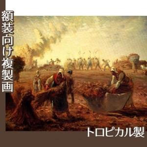 ミレー「夏:蕎麦の収穫」【複製画:トロピカル】
