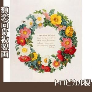 ルドゥーテ「バラ図譜の口絵」【複製画:トロピカル】