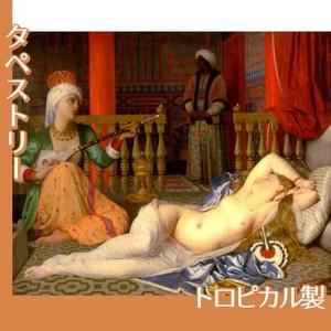 アングル「奴隷のいるオダリスク」【タペストリー:トロピカル】