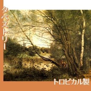 コロー「ヴィルーダヴレーの池」【タペストリー:トロピカル】