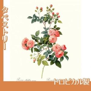 ルドゥーテ「ノイバラ」【タペストリー:トロピカル】