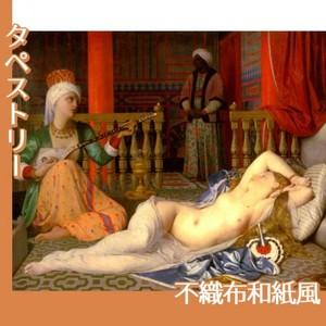アングル「奴隷のいるオダリスク」【タペストリー:不織布和紙風】