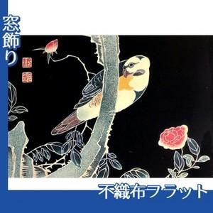 伊藤若冲「花鳥版画(六枚) 三.薔薇に鸚哥図」【窓飾り:不織布フラット100g】