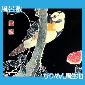 伊藤若冲「花鳥版画(六枚) 三.薔薇に鸚哥図」【風呂敷】