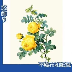 ルドゥーテ「ロサ・スルフレア」【窓飾り:不織布和紙風】