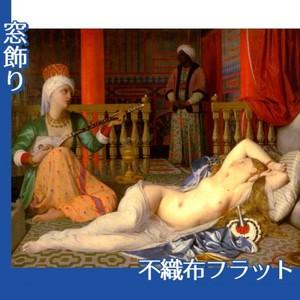 アングル「奴隷のいるオダリスク」【窓飾り:不織布フラット100g】