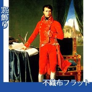 アングル「第一執政官ナポレオン・ボナパルト」【窓飾り:不織布フラット100g】