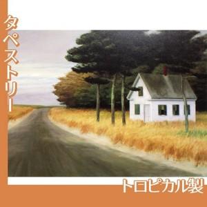エドワード・ホッパー「孤独 1944」【タペストリー:トロピカル】