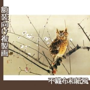西村五雲「寒梅」【複製画:不織布和紙風】