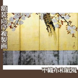 酒井抱一「桜図屏風(右隻)」【複製画:不織布和紙風】